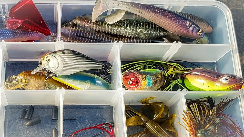 Dock Fishing In The Heat – Everything You Need To Know